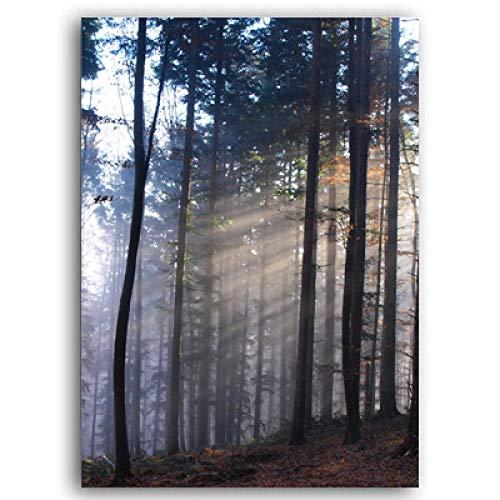 Rayos de sol en Misty Winter Morning Scene Poster Arte de la pared Pintura en lienzo Impresiones Imágenes Sala de estar Oficina Decoración para el hogar-20x30cm Sin marco