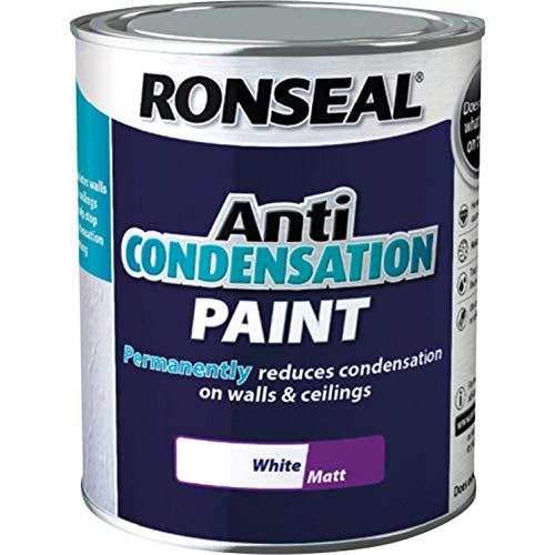 Ronseal ACPWM750 Anti Condensation Paint White Matt 750ml