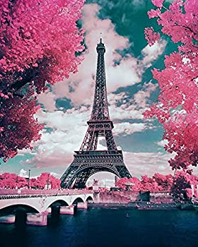HLKZONE 5D Diamond Painting by Numbers Kits Pink Paris Painting Cross Stitch Full Drill Arts Craft on Canvas for Home Wall Decor  Canvas 16X20in