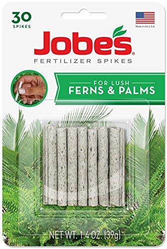 Easy Gardener Jobe's/Jobes Lot de 30 Pointes d'engrais pour fougère et Palmier