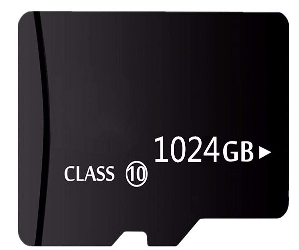 道徳教育わずらわしい立派な1TB Micro Memory Card XC ストレージ S D 1024GB メモリーカード