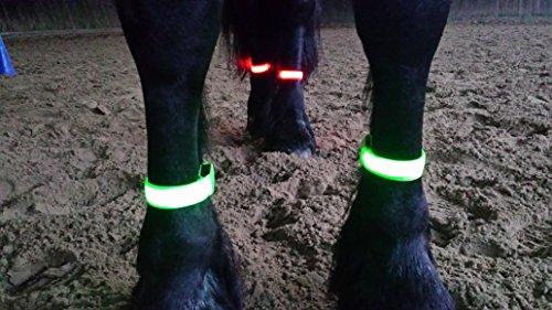 Rutis Horse Leg Stripes LED Fessellbeleuchtung per USB aufladbar (M, Rot)