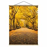 Bilderwelten Imagen de Tela - Autumn In Central Park - 66.4cm x 50cm, Material: Roble