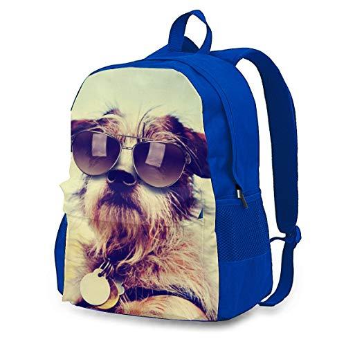 Chihuahua - Gafas de sol para perro, mochila de ciclismo al aire...