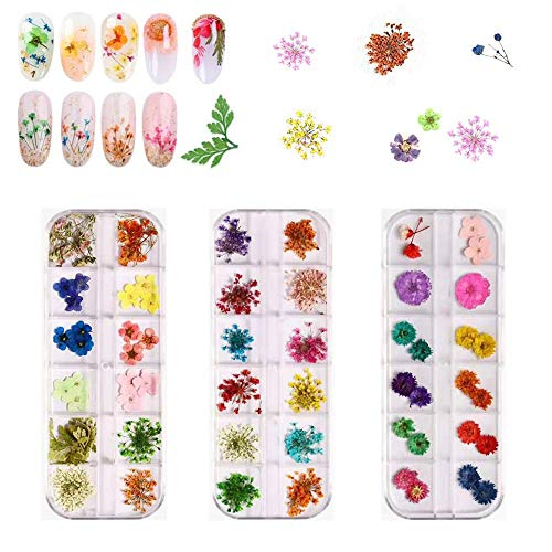 Nail art fiori secchi 3 scatole 36 colori Applique per unghie 72 pezzi 3D nail art Adesivi per decorazione fai da te nail art