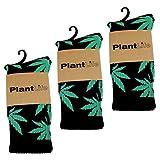 Plantlife® Socken Hanf Socks in universeller Größe, Unisex schwarz/grün