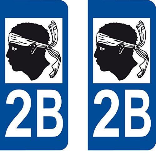 SAFIRMES 2 Stickers Autocollant Style Plaque Immatriculation département 2B