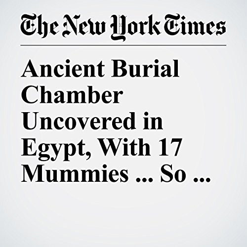Ancient Burial Chamber Uncovered in Egypt, With 17 Mummies ... So Far copertina