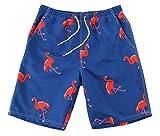 WUAMBO Athletic - Bañador estilo bermudas para hombre, secado rápido, con diseño de flamencos -  Azul -  US Medium Etiqueta XL (Cintura:32'-34')