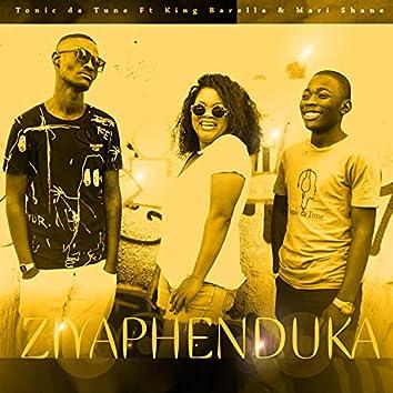 Ziyaphenduka (feat. King Barella & Mari Shane)