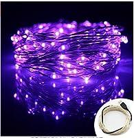 (イスイ)YISHUI USB式 LED イルミネーション ライト 銅線ワイヤーライト10m LED100 球電飾 飾り付け フェアリーライト (パープル)