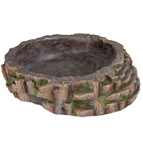Trixie 76209 Badeschale für Reptilien, 35 × 9 × 34 cm