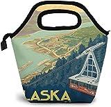 American Vintage - Bolsa de almuerzo con aislamiento de Roberts Alaska, para picnic, enfriador portátil, bolsa de almuerzo para mujeres, niñas, hombres y niños