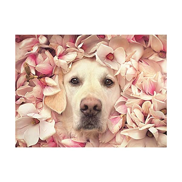 Puzzles 1000 Pieces for Adults -Large Pet Colorcraft Puzzles – Intense Jigsaw Puzzles...