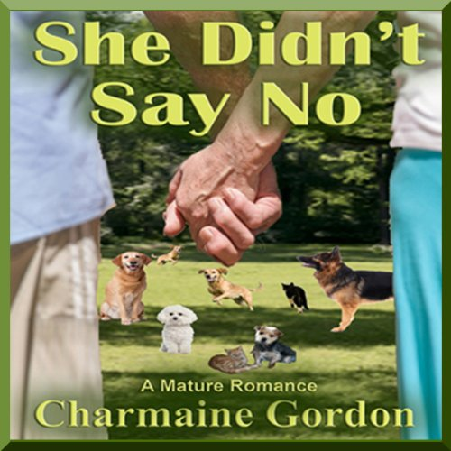 She Didn't Say No audiobook cover art