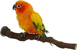 Wood Bird Stand Perch, Natural Wild Grape Stick Paw Grinding Standing Climbing Toy Cage Accessories for Small and Medium Parrots, Parakeets, Cockatiels, Lovebirds, Sun Conures, Caique, African Grey