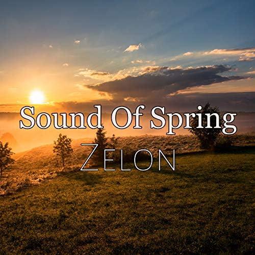 Zelon