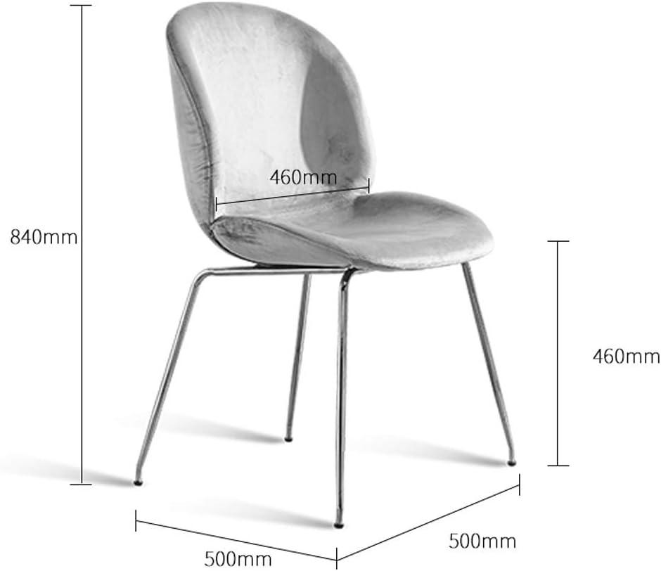 WDX- Chaise de Salle, Chaise de Bureau Simple, créative Dossier, Chaise Loisirs, Maison Adulte Chaise de Salle Confortable (Color : Gray) Blue