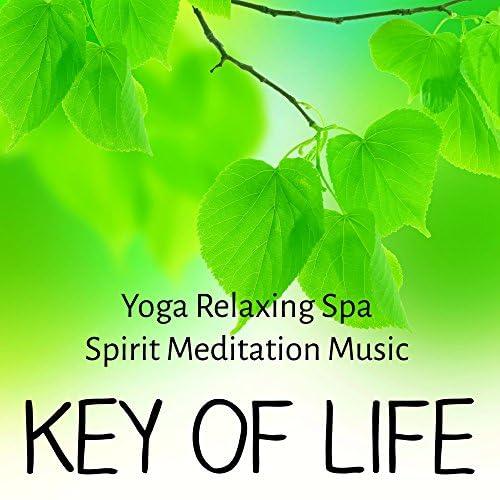 Yoga Music Classics & Easy Listening Guitar All Stars & The Spirit of Yoga