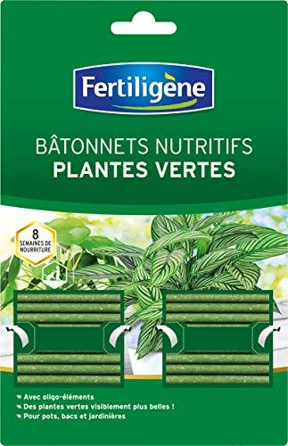Fertiligène Dünger für Grünpflanzen