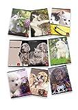 Conf. 10 pz. Maxi Quaderni A4 DOLCI CUCCIOLI 02302920A