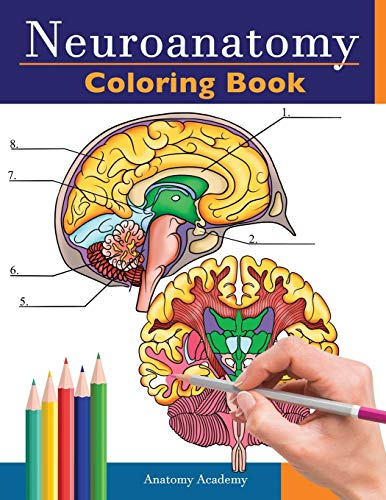 Neuroanatomy Coloring Book: Incredibly Detailed Self-Test Human Brain Coloring Book for Neuroscience | Perfect Gift for Medical School Students, Nurses, Doctors and Adults