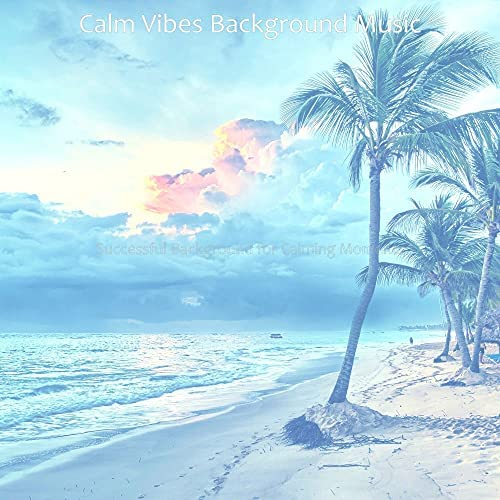 Calm Vibes Background Music