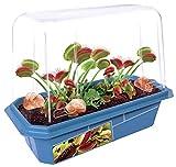 Grow Your Own Frightening Venus Flytraps -...