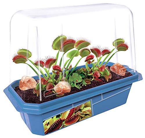 Grow Your Own Frightening Venus Flytraps  Kids Terrarium Kit to Grow Vicious Bug Eating Monsters  Includes Everything Needed for These Fascinating Plants to Flourish