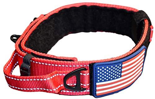 Badass dog collars