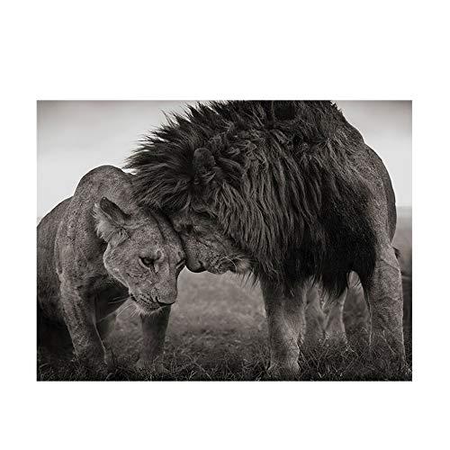 XIANGPEIFBH Cuadro en Lienzo Cabeza a Cabeza Leones Arte en Blanco y Negro Carteles e Impresiones Arte de la Pared Imagen para la Sala Marco decoración 60x70cm (23.6