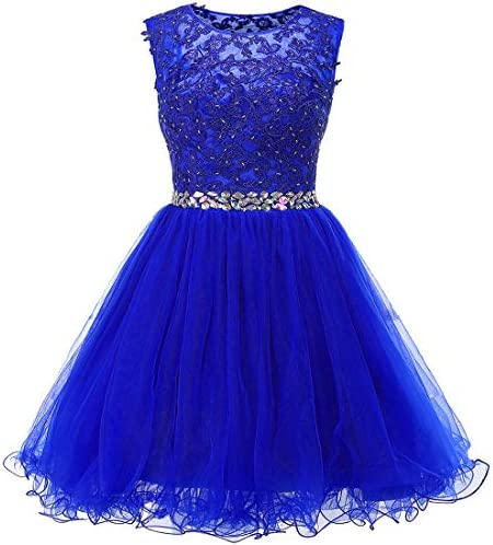 Ailidaw Women s Tulle Homecoming Dress Short Applique Beaded Formal Prom Cocktail Party Gowns product image