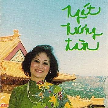 Ngát Hương Đàm - Hà Thanh Phật Ca 1