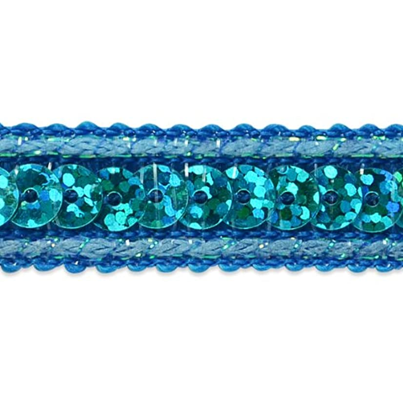 Expo International Single Row Starlight Hologram Sequin with Sparkle Edge Trim, 20-Yard, Aqua Blue