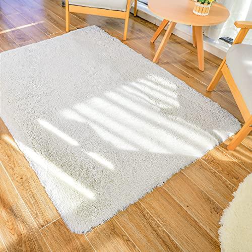 Tappeto peluche LNGVBF, soffice tappeto, zerbino, morbido tappeto antiscivolo, tappeto per camera da...