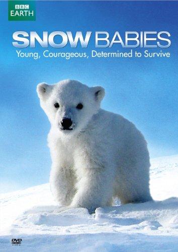 Snow Babies / Polar Bear: Spy on the Ice