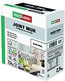 Parexlanko, Joint Mur, Joint hydrofugé pour carrelage (1 à 6mm), Blanc email, 2,5kg