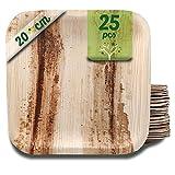 25 platos de hoja de palma cuadrados de 20 cm. Platos desechables para fiestas, picnics y barbacoas.