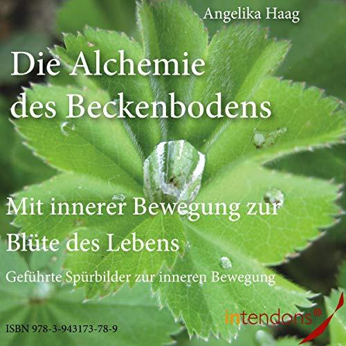 Die Alchemie des Beckenbodens Titelbild