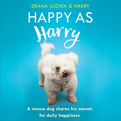 Happy as Harry audiobook cover art