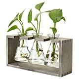 MyGift Rustic 3-Glass Beaker Flower Vases with Grey Wood Stand