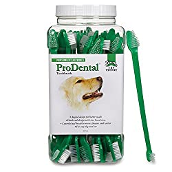 7 Most Popular Dog Toothbrush Reviews
