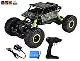 Popsugar Rock Crawler 1: 18 2.4GHz Remote Control Car 4WD Off Road RC