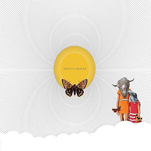 Insects Awaken [Vinilo]