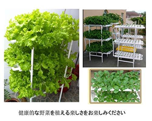 水耕栽培キットすいこう栽培植物野菜植物育成家庭菜園室内ベランダ水耕栽培セット(36穴)