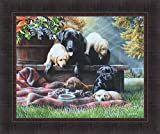 Cozy Moments by Kevin Daniel 20x24 Labrador Retriever Black Yellow Chocolate Lab Puppies Blanket Framed Art Print Wall Décor Picture