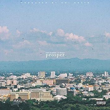 Prosper (feat. E. Wild)