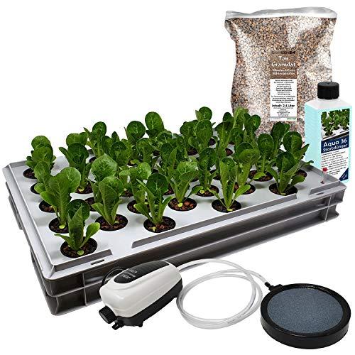 GREEN24 Aqua 36-C Pro Hydroponic Anzucht-System XL 40 x 60 cm Hydroponik Indoor Pflanzen-Aufzucht für Nutzpflanzen, Gemüse, Kräuter, Salate, Zierpflanzen in Tiefwasserkultur (Modell Aqua 36-C)