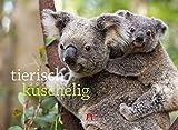 Tierisch kuschelig 2020, Wandkalender im Querformat (45x33 cm) - Natur- / Tierkalender mit niedlichen Tierpaaren und -familien, Geschenkkalender
