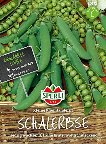 80572 Sperli Premium Erbsen Samen Kleine Rheinländerin   Frühe Ernte   Ertragreich   Erbsen Saatgut